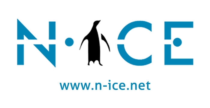 N-Ice